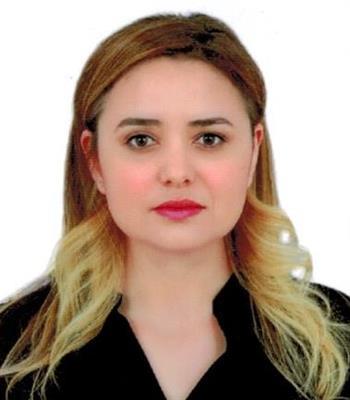 Dr. Öğr. Üyesi Neslihan Tekin Karacaer